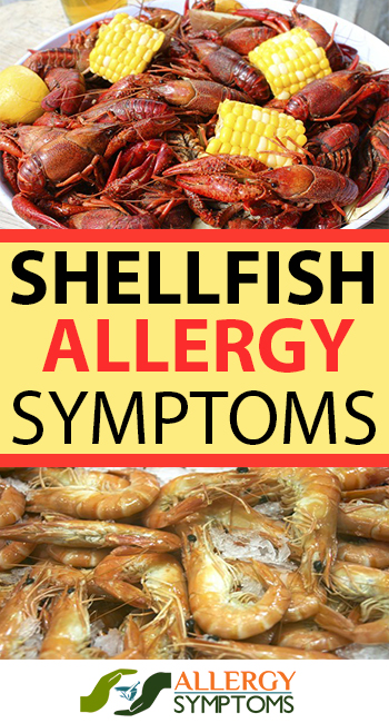 Shellfish Allergy Symptoms