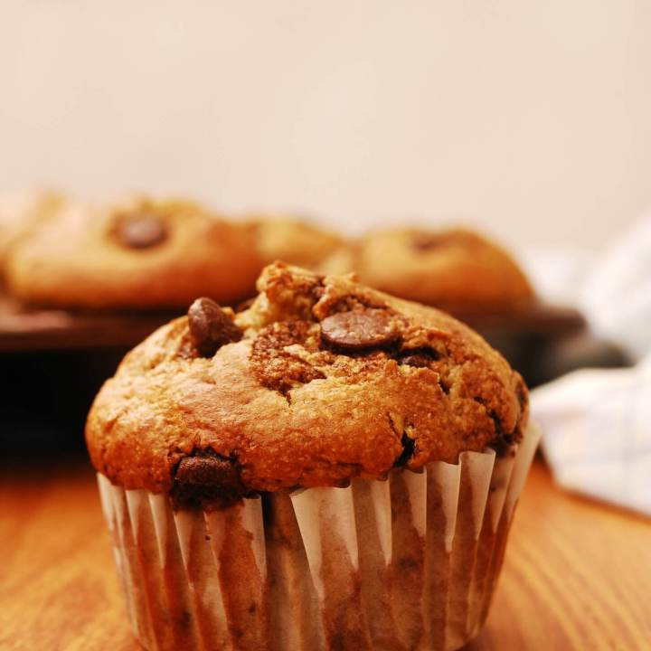 Blender Oatmeal Banana Chocolate Chip Muffins (Gluten, Dairy, Egg, Soy, Peanut/Tree nut Free!)