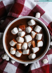 Dairy-free & Vegan Homemade Hot Cocoa Mix by AllergyAwesomeness.com