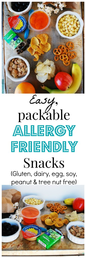 Easy Portable Allergy Friendly Snacks by AllergyAwesomeness