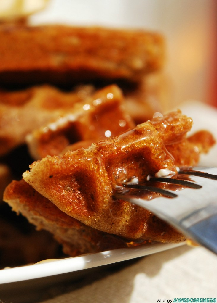 Gluten-free Vegan Gingerbread Waffles (Gluten, dairy, egg ...