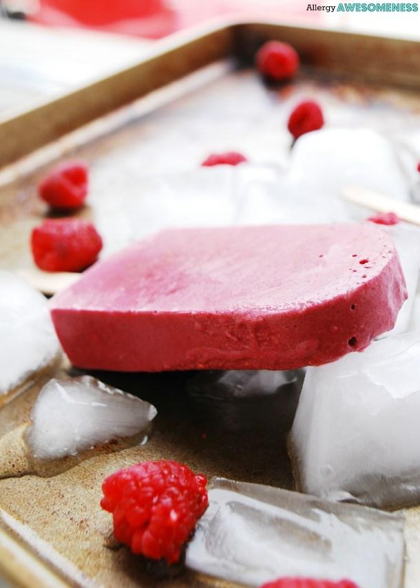 Dairy-free Raspberry Chocolate Protein Popsicles Recipe