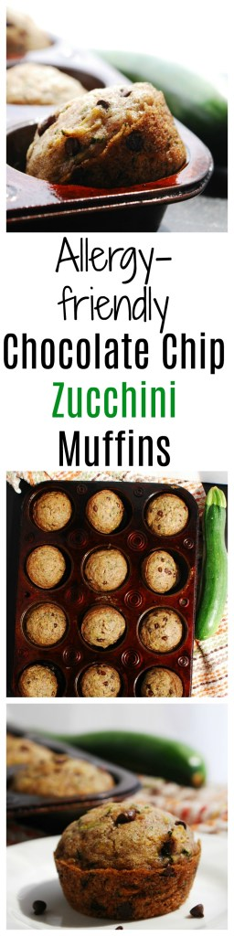 Allergy-friendly Chocolate Chip Zucchini Muffins Recipe by AllergyAwesomeness