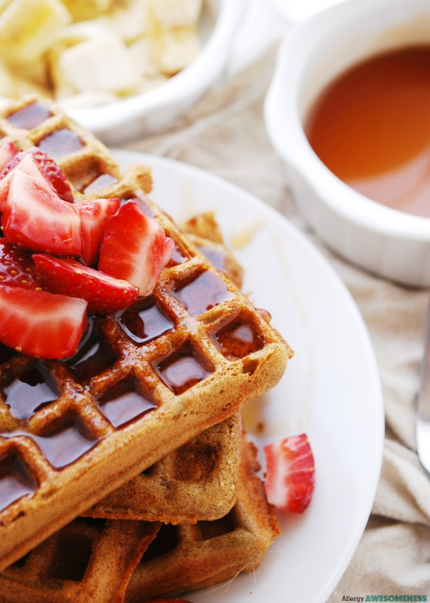 Allergy-friendly Blender Waffles