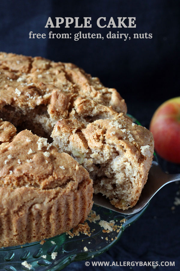 Apple cake that's gluten dairy and nut-free.