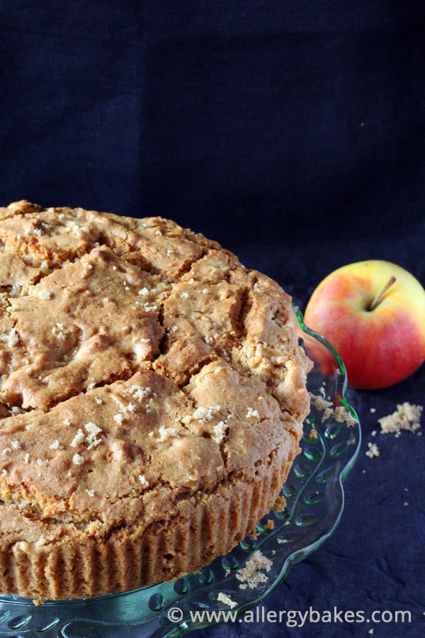 Dairy-free, gluten-free, nut-free apple cake.