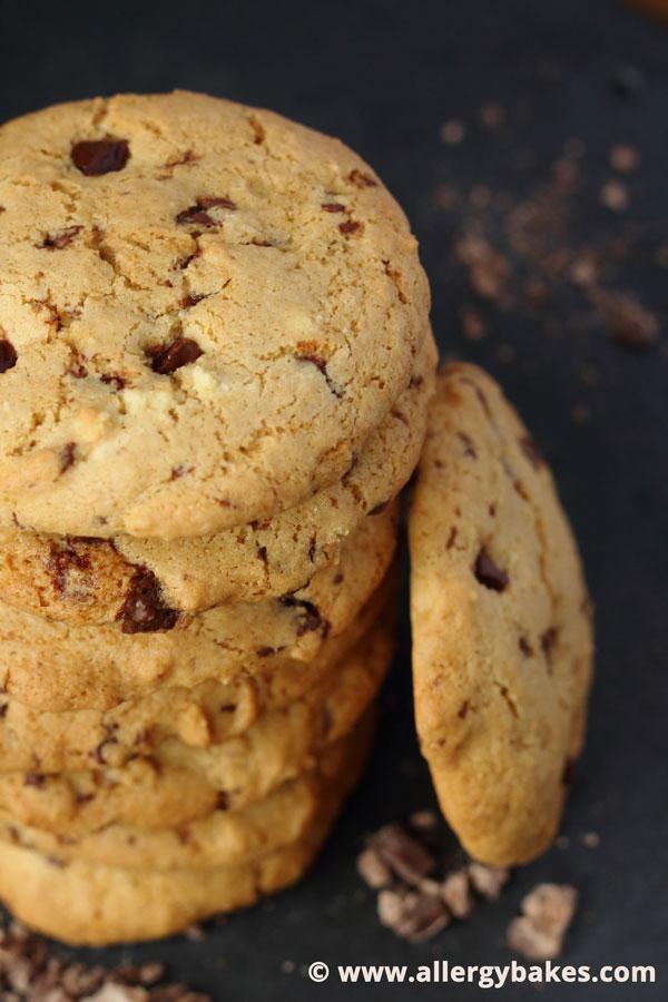 Dairy-free, Gluten-free, Nut-free Chocolate Chip Cookies