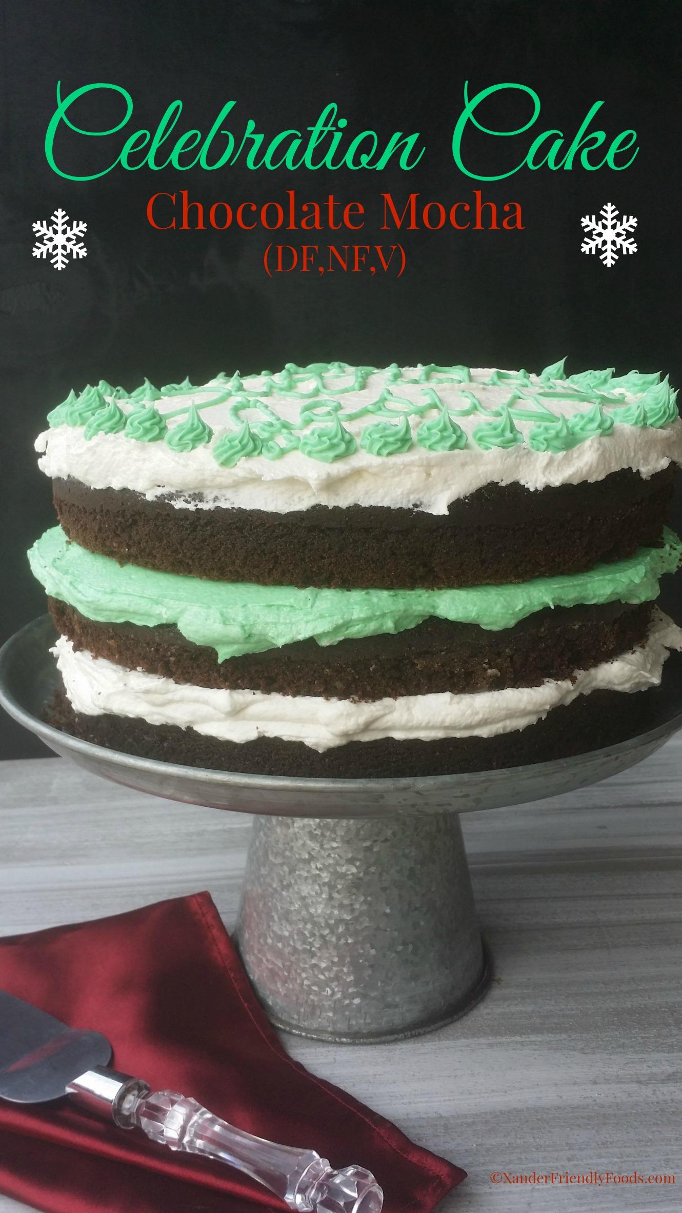 Chocolate Mocha Cake for any upcoming celebration. {DF,NF,V)
