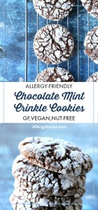 Light and pillowy chocolate mint crinkle cookies, dusted with snowy caps of sugar are a wonderful addition to any Holiday table. DF,EF,NF (Gluten free option)