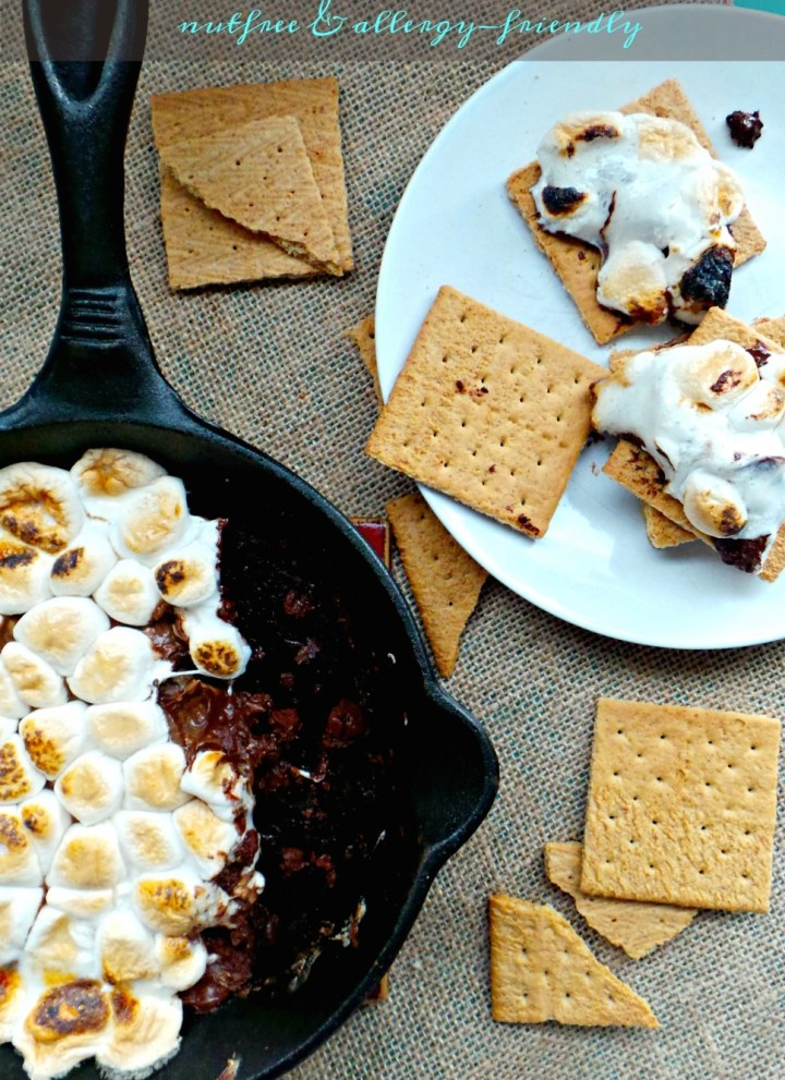 SunButter S'mores Dip