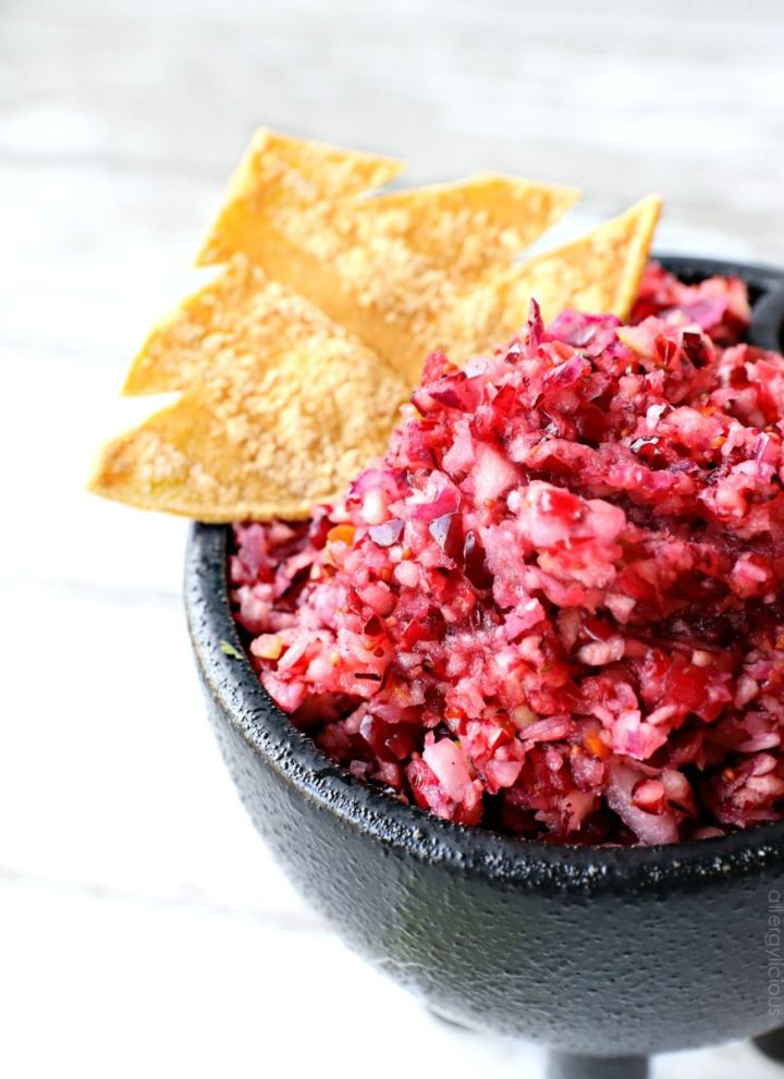 Cranberry Salsa with Tree Chips
