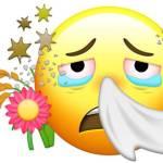 allergy emoji