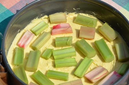 glutenfreier Rhabarberkuchen