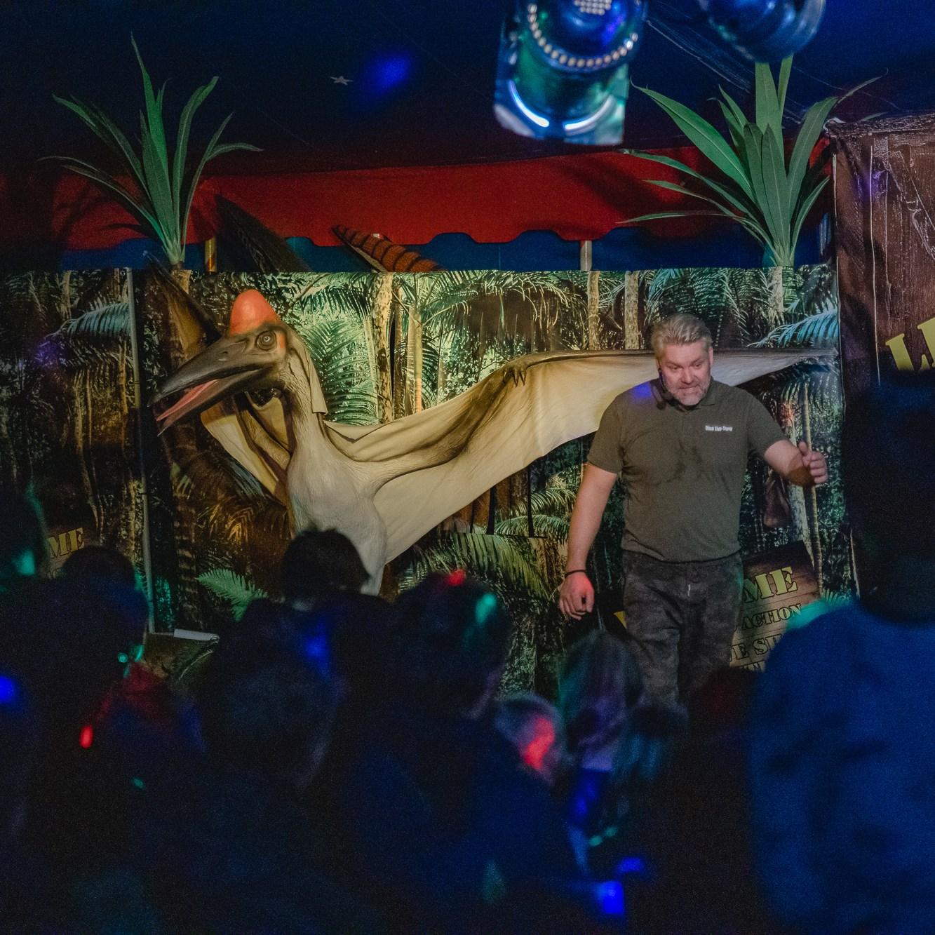 Dinosaurier Fun & Action