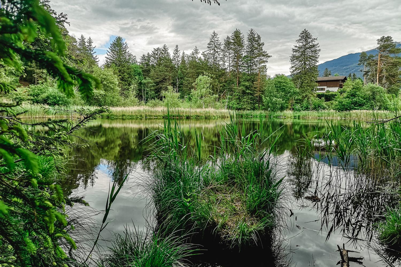 Lanser See und Lanser Moor | Ausflugsziel Tirol