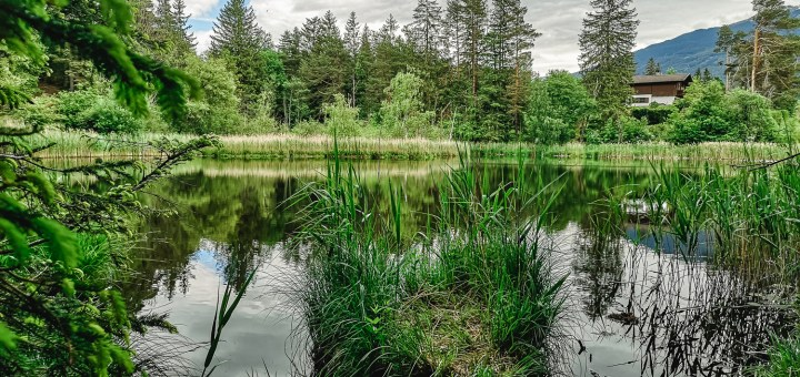 Lanser See und Lanser Moor   Ausflugsziel Tirol