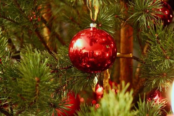 Rote Kugel am Weihnachtsbaum