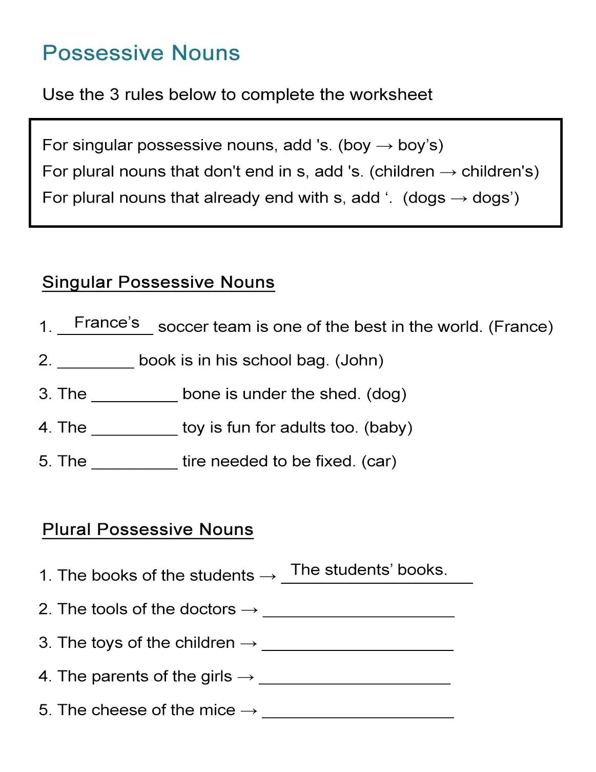 Possessive Nouns Worksheet Singular And Plural Nouns