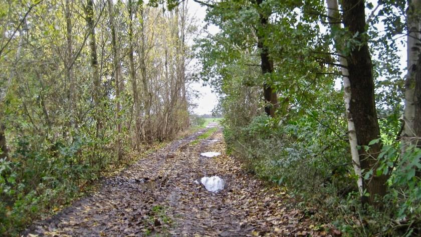 Onverharde paden