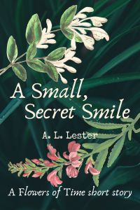 Cover: A Small Secret Smile