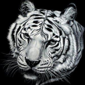 Tijger (zwart-wit) - Diamond Painting 30x30 cm (volledige bedekking) inclusief premium tools - TMT Diamond ®