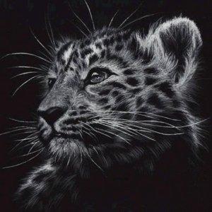 Welp - Tijger (zwart-wit) - Diamond Painting 30x30 cm (volledige bedekking) inclusief premium tools - TMT Diamond ®