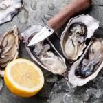 oesterkrakers - allesvoorevent.nl