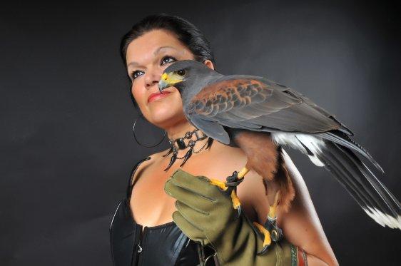 Miss Hawks Events – roofvogels en andere dieren