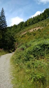 Wandeling Le Tour de Bayehon