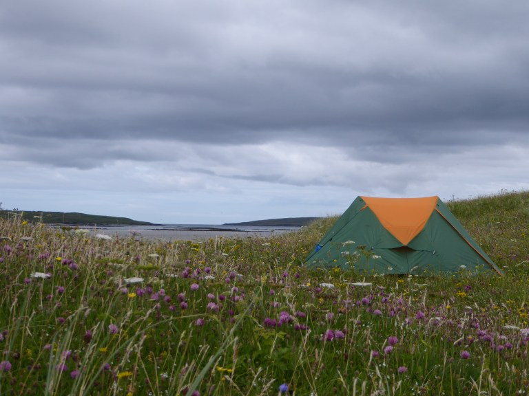 Eureca tent between the wild flowers on Pabay, Barra head iles