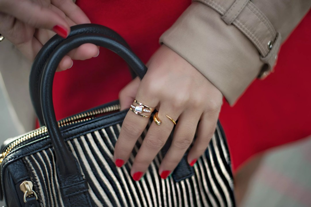 zebra-han-bag-and-jewelry-detail-gold-plated-rings