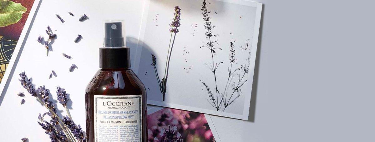 L'occitane Valentine's Day Gift Ideas