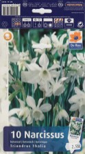 Narcissus_botanical_Triandus_Thalia