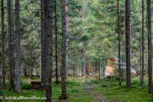 Kõlakojad metsas