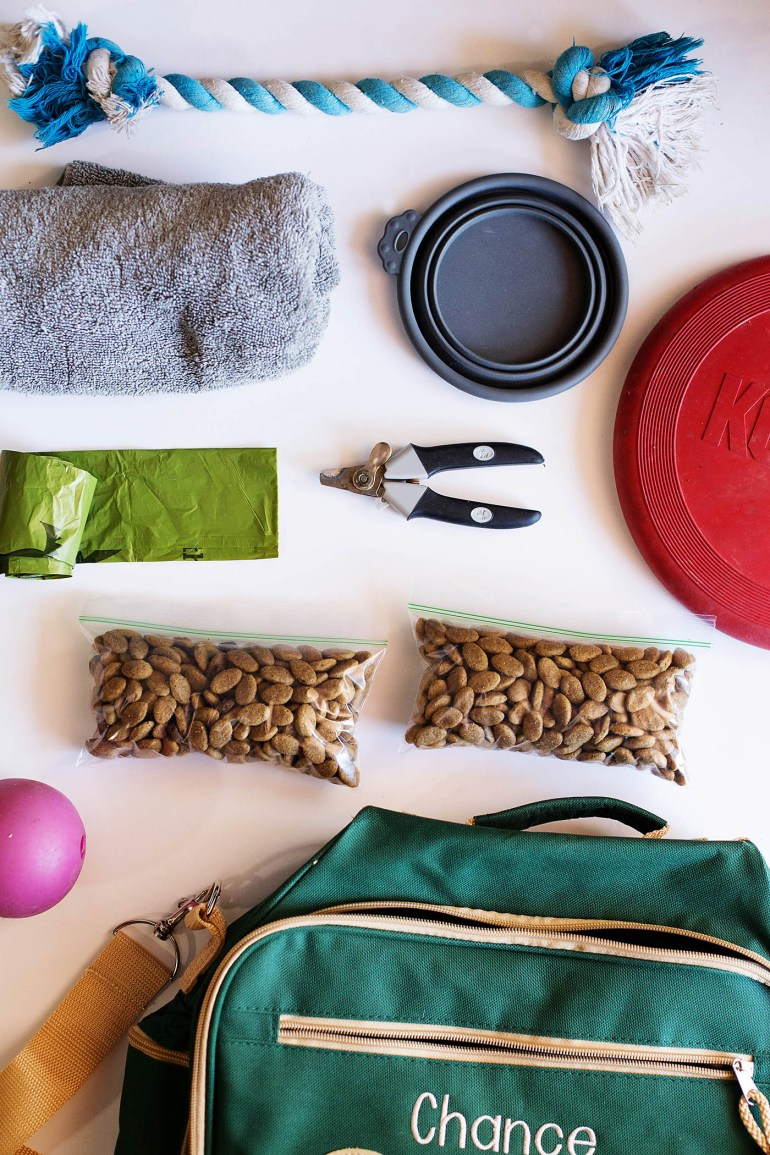 Great tips on traveling with dogs - like pre-sorting their meals!