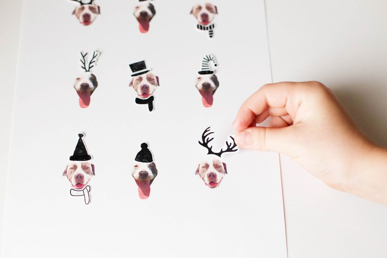 DIY Holiday Dog art!