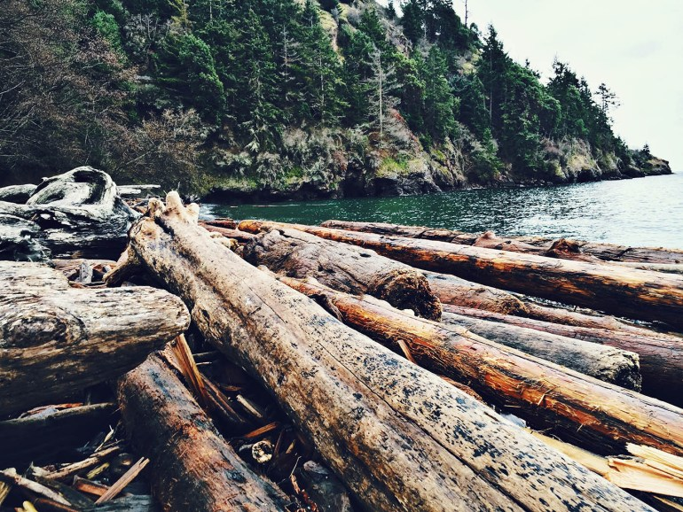 Lime Kiln Point State Park, Washington