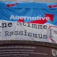 AfD-Ortschef Rainer Rothfuß entfernt Plakate der Grünen