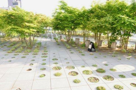 jardines en aticos