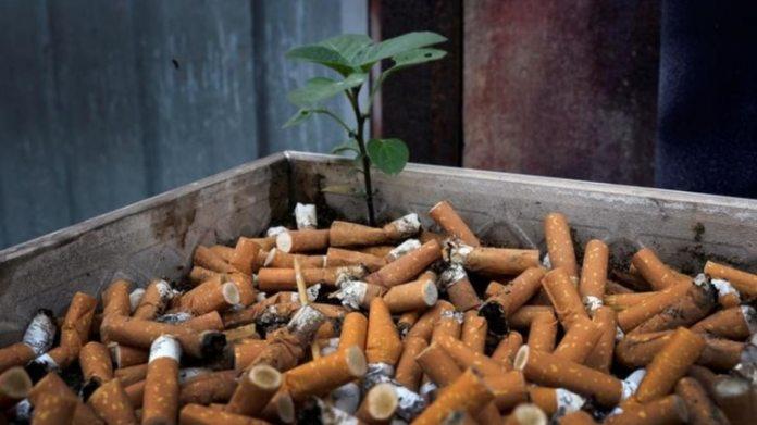 <pre>डब्ल्यूएचओ के मुताबिक कोरोनोवायरस के उच्च जोखिम से जुड़ा धूम्रपान