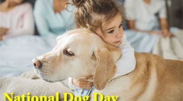 National Dog Day Pic 2019
