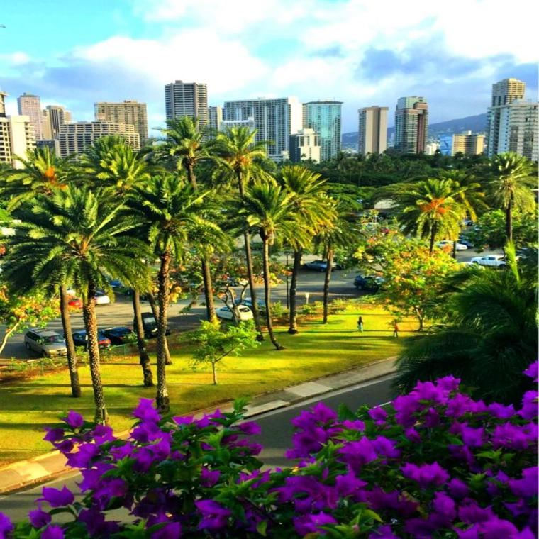 Teach Why Honolulu Best All Inclusive Honeymoon