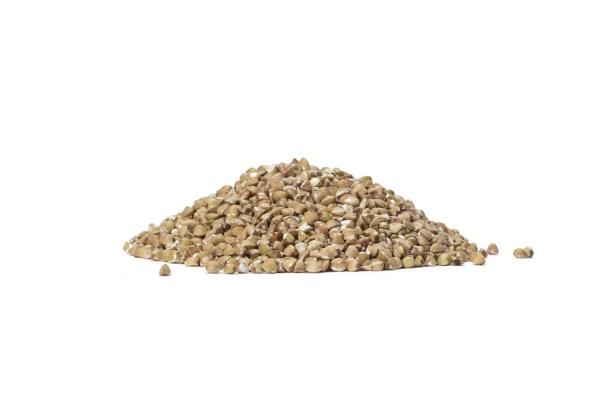 Vente graines de sarrasin bio