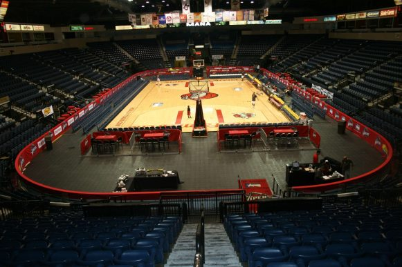 Rio Grande Valley Vipers-1
