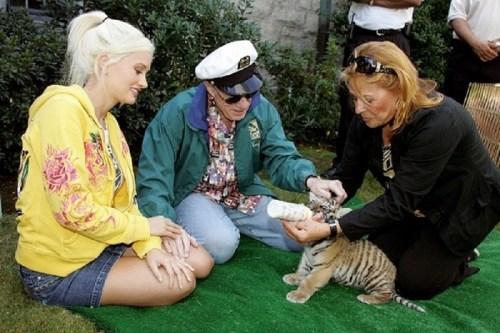 playboy mansion - zoo