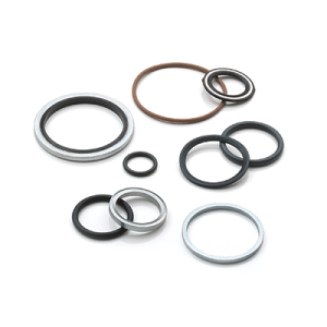 Gaskets / O-Rings / Seals
