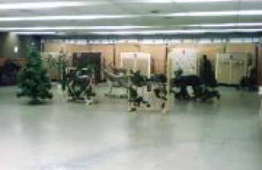 Indoor 3D Archery