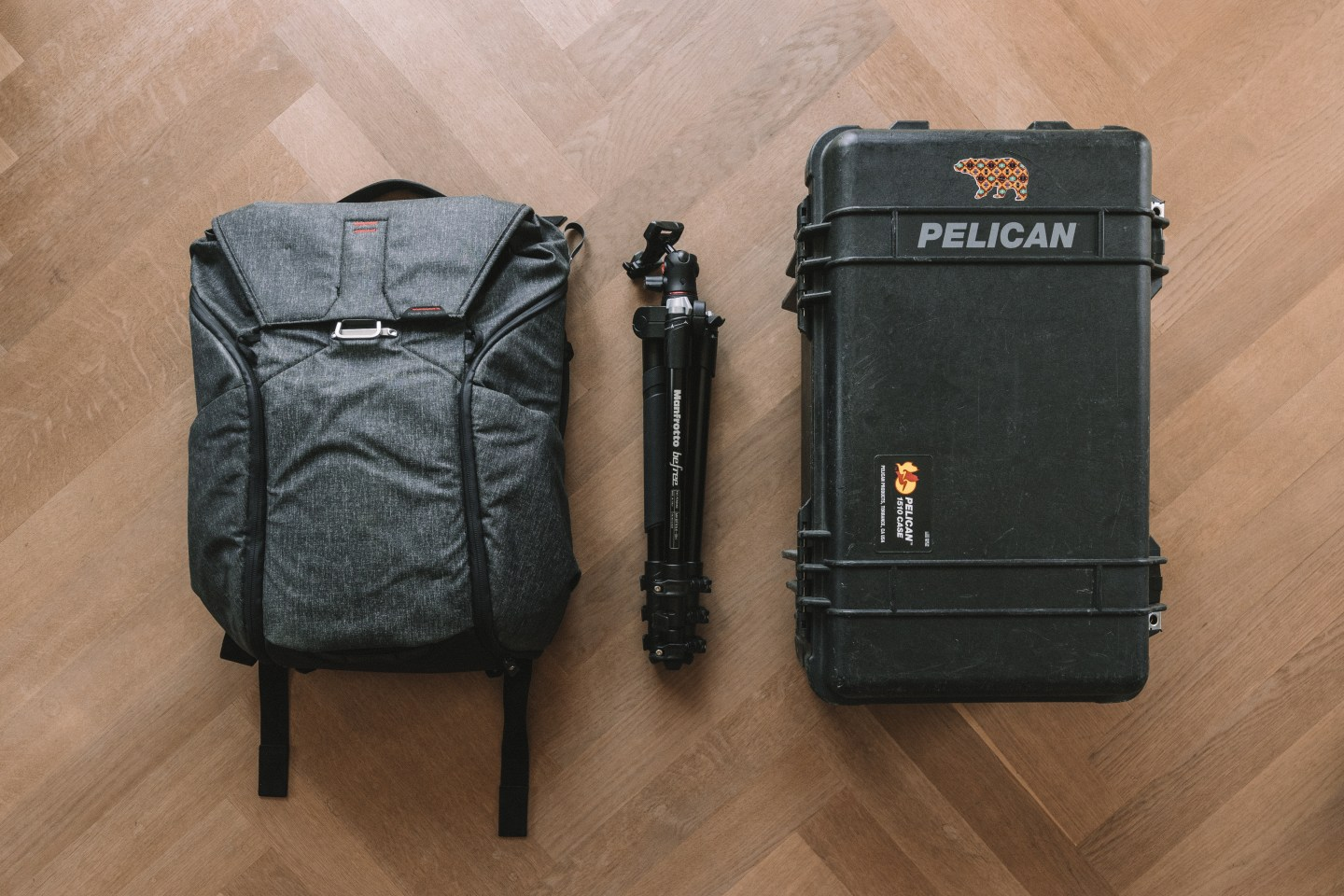 Camera backpack and Pelican Case