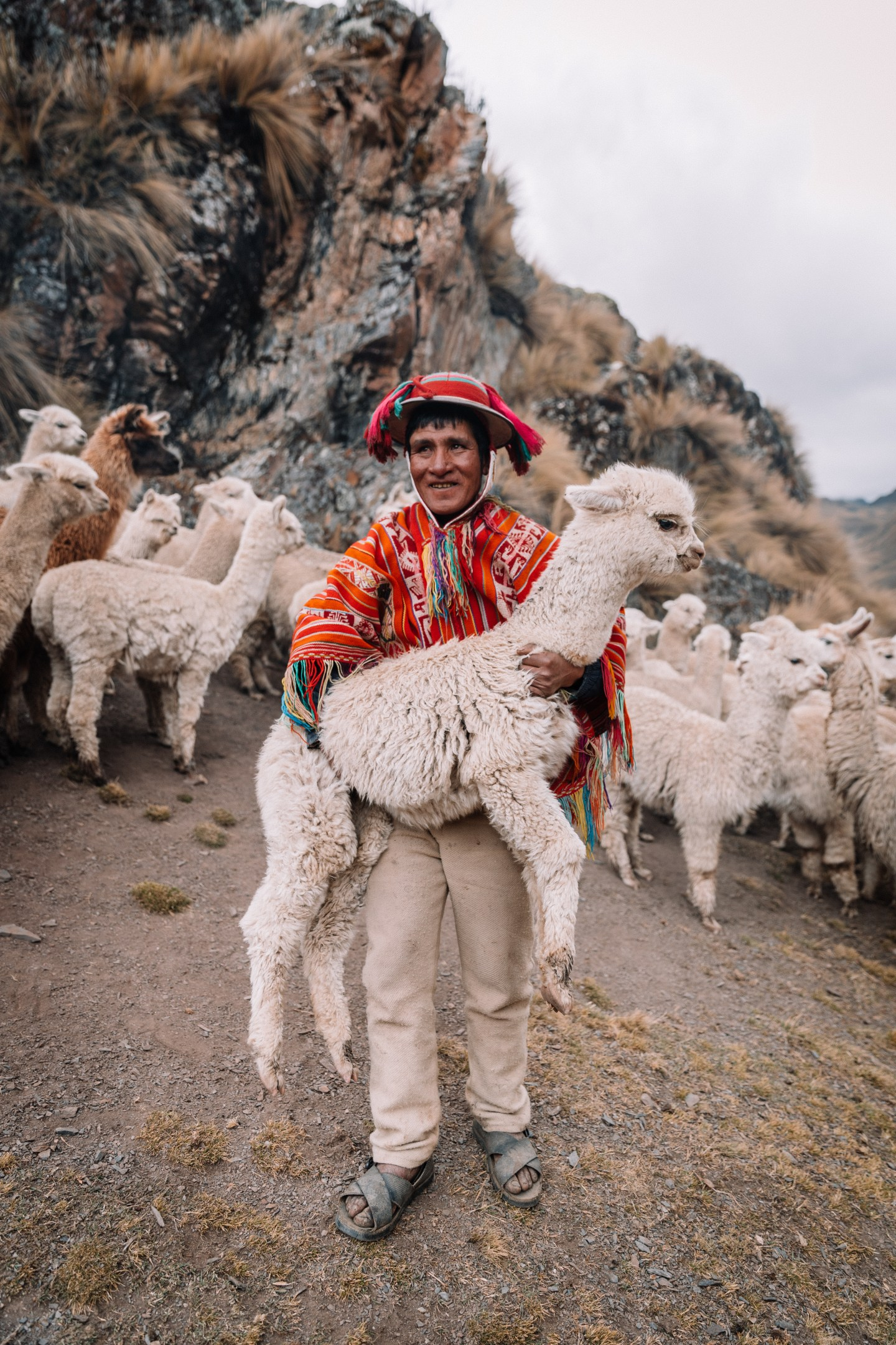 The Ultimate 7 Day Itinerary For Peru - Allie M. Taylor