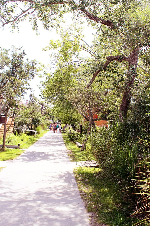 Fire-Island-walkway